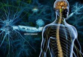Pinched Nerve Disease
