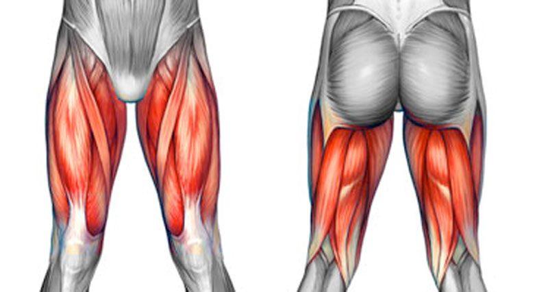 upper leg injury specialist clinic