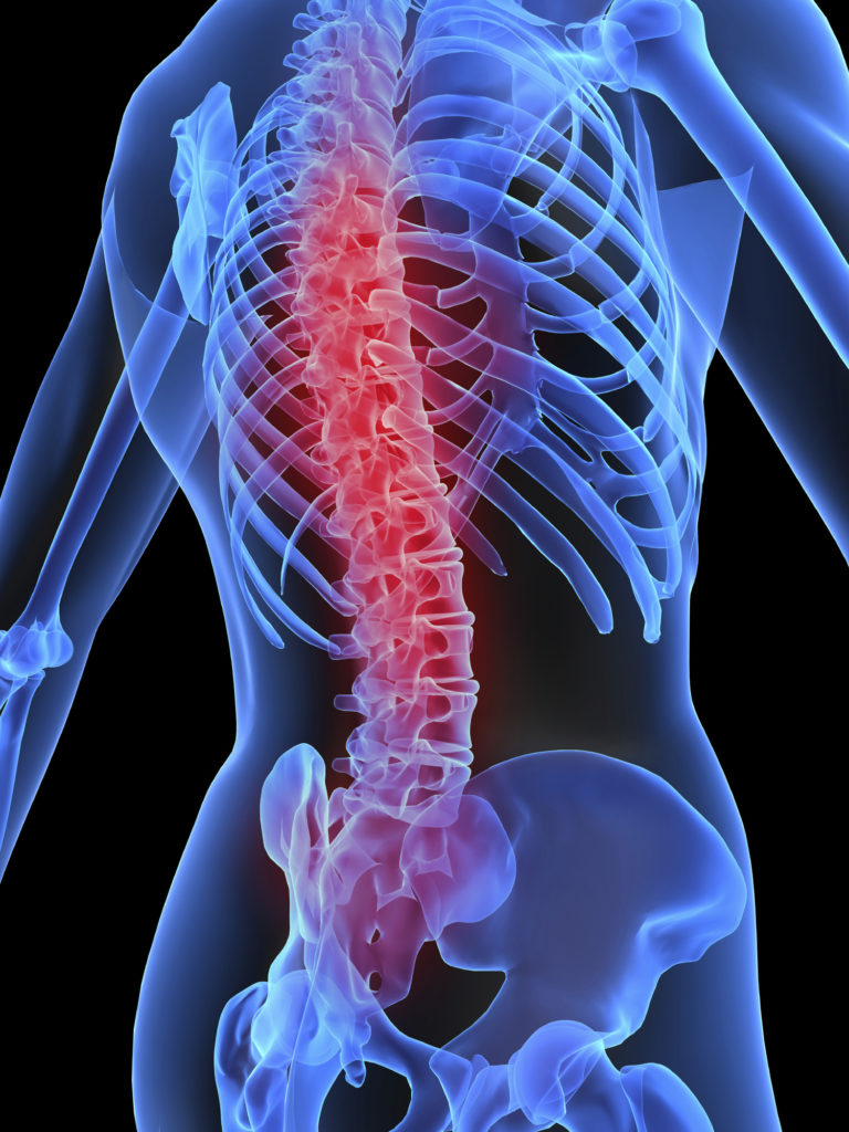 Spinal Cord Injury Specialist