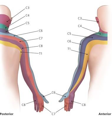 Neck Nerve Pain Specialist Clinic